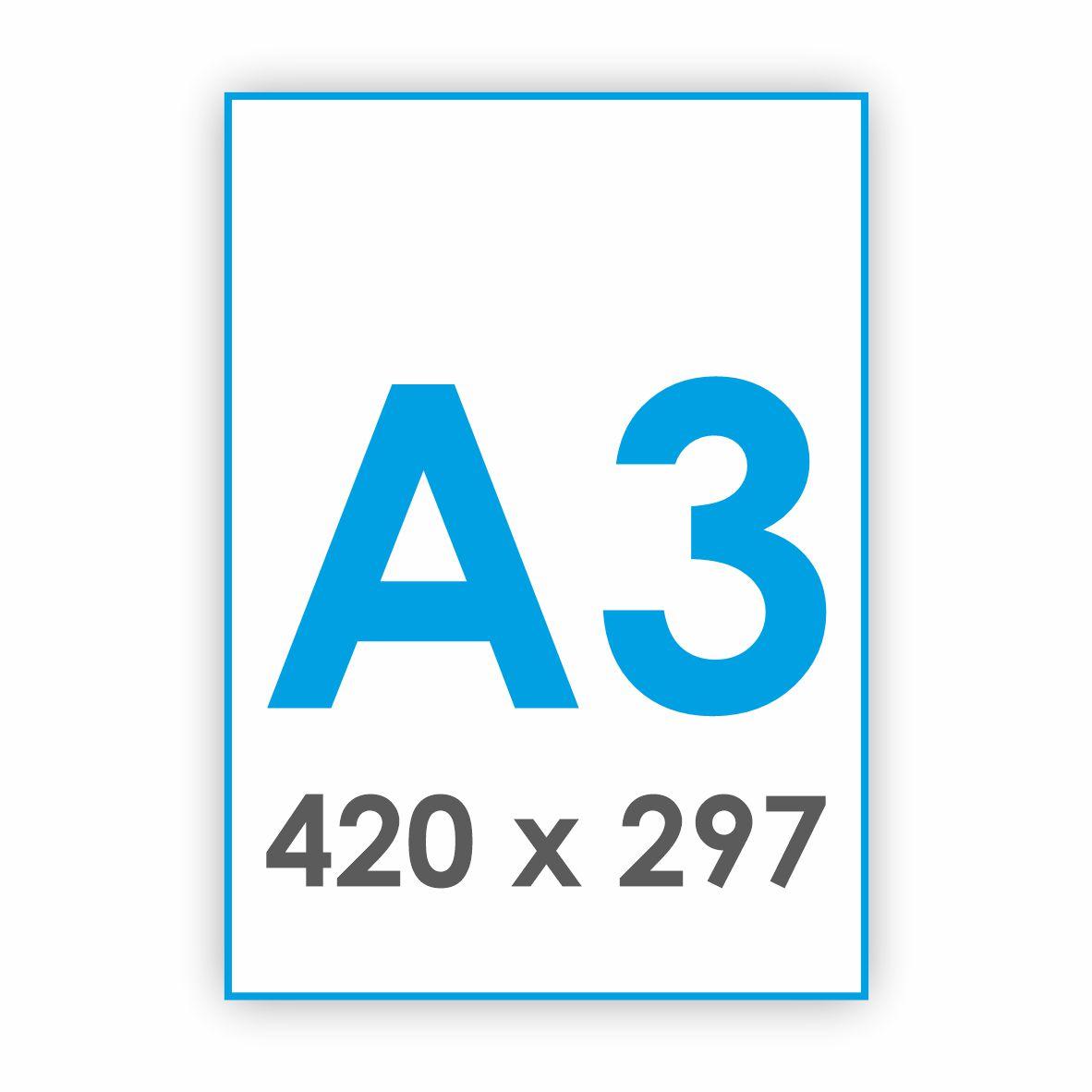 A3 - 420 x 297 mm