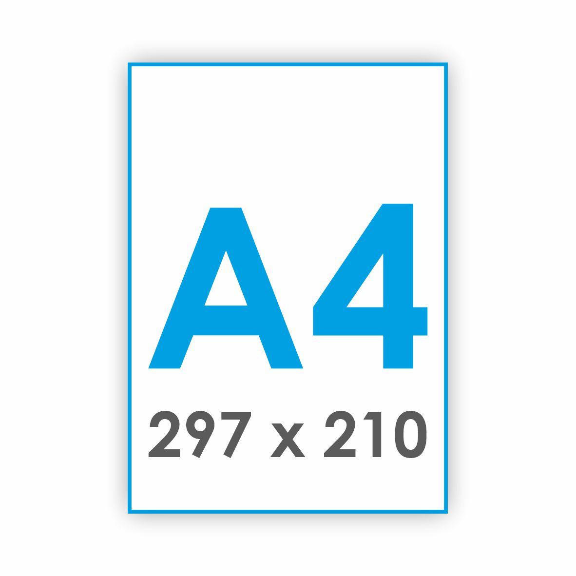 A4 - 297 x 210 mm